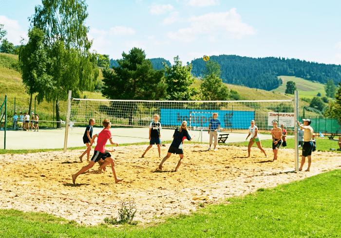 obozy sportowe wts deski